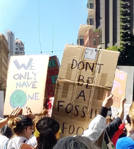Fossil-Protest